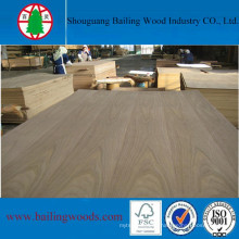 Poplar Core Black Walnut Veneer Plywood for Home Furniture