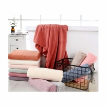 280gsm Super Cozy Absorbent Coral Fleece Terry Towel