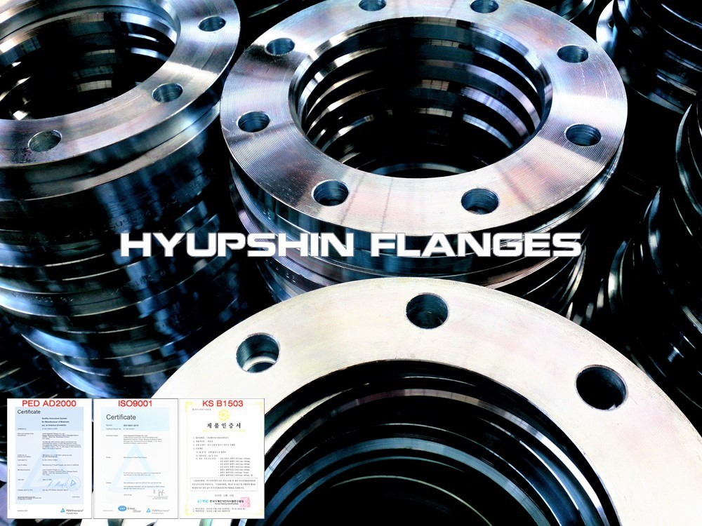 Hyupshin Flanges Lapped Loose