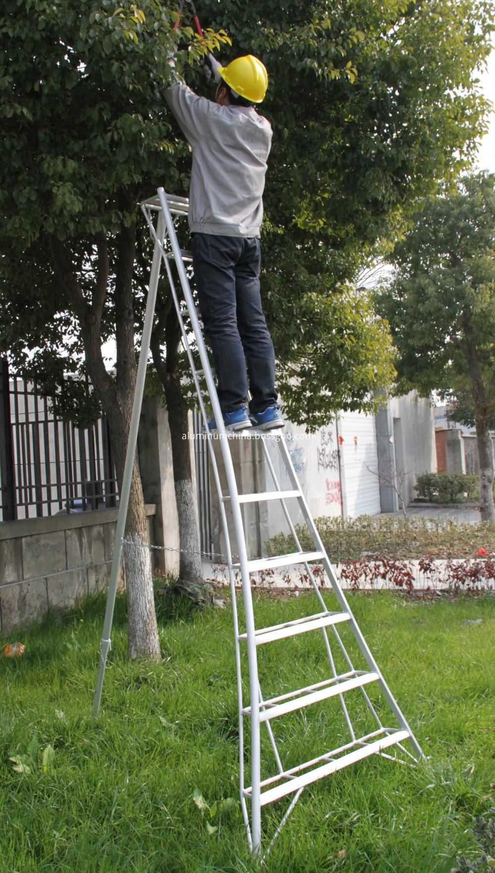 GMK_Tripod ladder