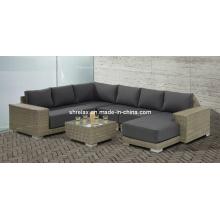 Jardín mimbre muebles Patio sala seccional sofá de la rota