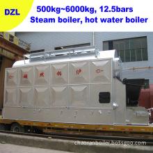 Steam Boiler (Coal, biomass pellet, wood, sawdust, rice hull) (DZL2)