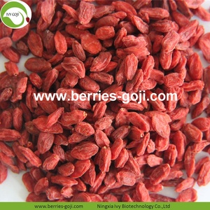 Factory Supply Fruits Nutrition Koop Goji Berry