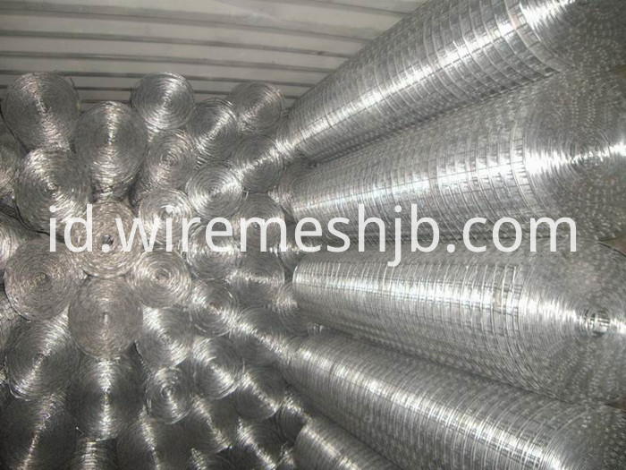Galvanized Welded Wire