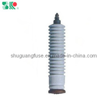 Lightning Arrester with 10kv (Y5W-10, Y10W-10)