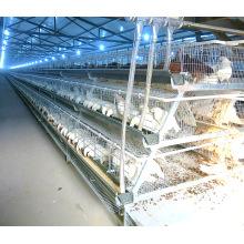 Broiler-Geflügelfarm mit automatischer Hühnerkäfig-Ausrüstung
