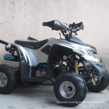 Квадроциклы ATCC с 50cc-125cc с сильной подвеской (JY-110-ATV07)