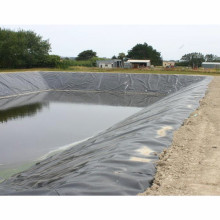Geomembrane with high tensile strength
