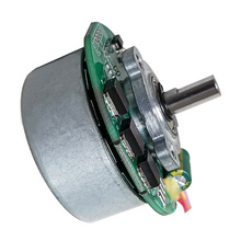 Brush Motor 24V, Micro DC Brush Motor & DC Brush Motor for Spray Machine Customizable