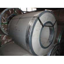 Prepainted Steel Coil for Roofing Sheet M From China Mill