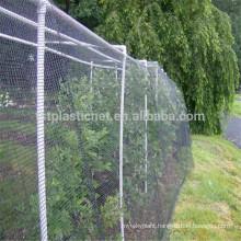 live bird traps netting to catch birds