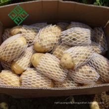 China Fresh Potato Export 100-600g Sweet Potato