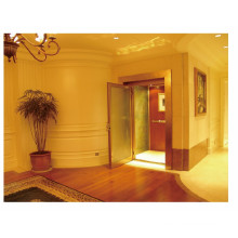 Small House Elevator Home Lift with Manual Door (LL-107)