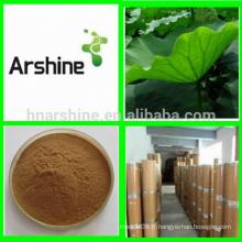 Perte de poids de plantes médicinales Extrait de feuilles de lotus