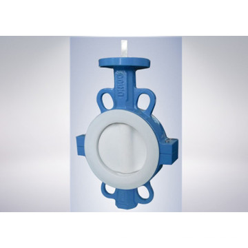 Two PCS Ductile Iron Wafer Butterfly Valve