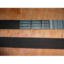 CUMMINS V RIBBED BELT 3289437