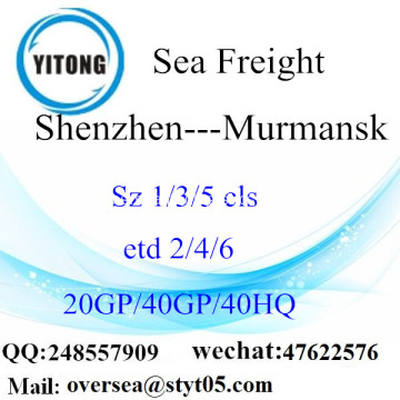 Shenzhen Port Sea Freight Shipping ke Murmansk