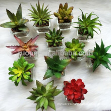 Mini Lifelike Real Touch Decoration Artificial Succulent Plants Supplier