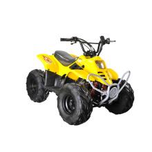 50cc / 70cc / 110cc дети мини Квадроцикл с одно место (GA001 лей)