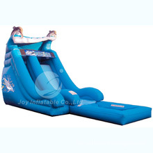 Dolphin Inflatable Water Slide T9-113