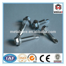 hex washer wood screw manufacture in China