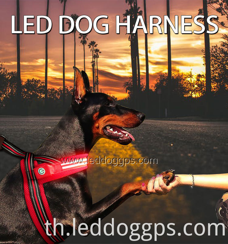 Led Safety Dog Harness