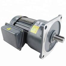 CV18-100-100SZ 15rpm 57nm  220V/380V 100W electric ac motor with gearbox reducer