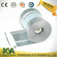 SWC7437-158 Grapas de cartón de bobina