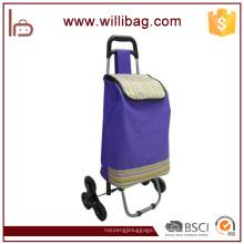 Carro plegable de la carretilla de las compras de Supermaket que hace compras con la bolsa de la carretilla de las compras de la silla