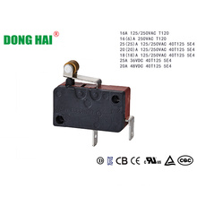 Short Hinge Roller  Micro Switch