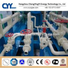 CNG20 Skid-Mounted Lcng CNG LNG Kombitankstelle