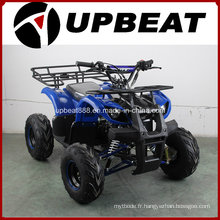 Upbeat 110cc / 125cc Mini Farm ATV Cheap Quad Bike