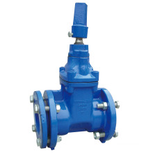 Awwa C515/509 Flanged Resilient Gate Valve with Nut Operator