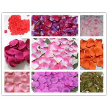 Pétalas de seda rosa