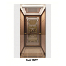 Villa Aufzug mit Spiegel Fertig Edelstahl (KJX-BS07)