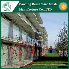 Climbing plants stainless steel wire mesh fence for support