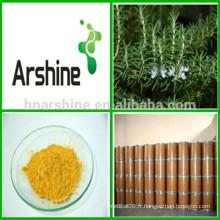 Suppléments nutritionnels Extrait de feuille de romarin 3% -20% Poudre d'acide rosmarinique
