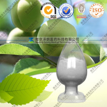Natural Olive Leaf Extract 40% ~ 98% Oleanolic Acid