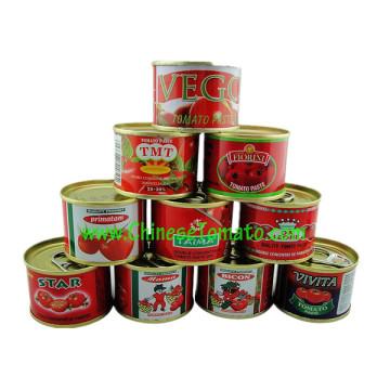 Tomaten-Paste (Tomaten-Ketchup, Tomatensauce 28-30%)