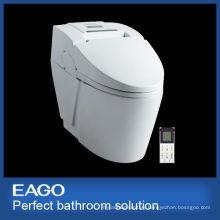 Digital toilet (TZ342)