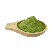 Polvo de extracto de hoja de col rizada vegetal orgánico de alta calidad