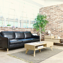 Nordic Style Leisure Living Room and Coffee House Leather Sofa