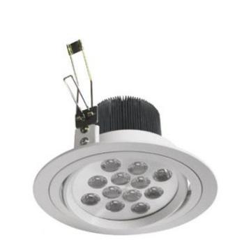Power-LED Downlight 12x1W LED-SY