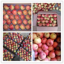 Китай Свежий красный вкусные яблоки