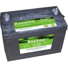 Bateria de carro grátis para manutenção -12V100ah-31-1000mf (31-1000MF)