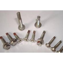 Stainless steel Phillips head cap screws