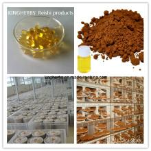 Reishi Sporenpulver / Öl / Softgel