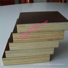 waterproof Film Faced Plywood/Form Work Plywood
