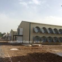 Stahlstruktur-Geflügel-Kontrollschuppen für Huhn-Produktion