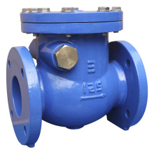 ANSI Class 125 Double Flange Swing Check Valve